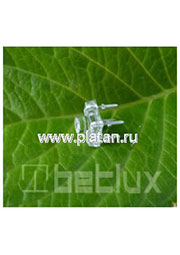 BL-FL7644PGC, Светодиод  Пиранья  зеленый чистый 140  3000мКд 525нМ (Ultra Pure Green)
